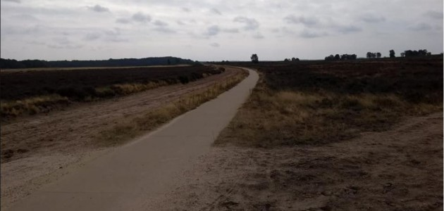 Heide 1